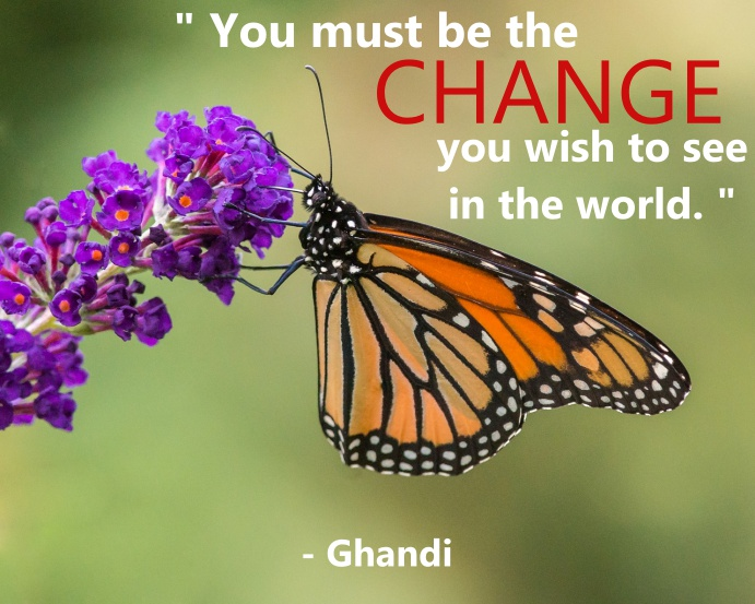 Butterfly Quote_Tagged